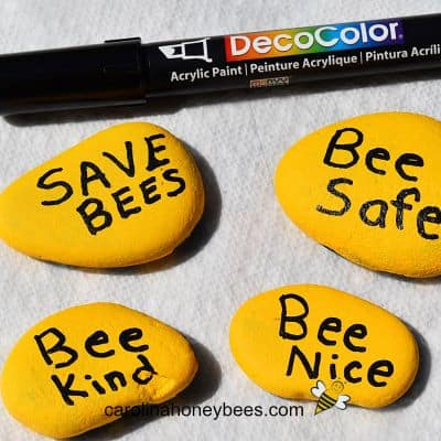 Painted bee messages on bottom of rocks imagel