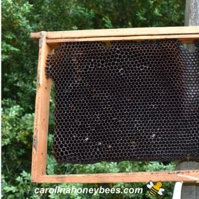 Comb Rotation: Replacing Old Brood Frames