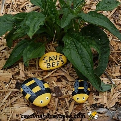 Three rocks painted to look like bees in a garden image.