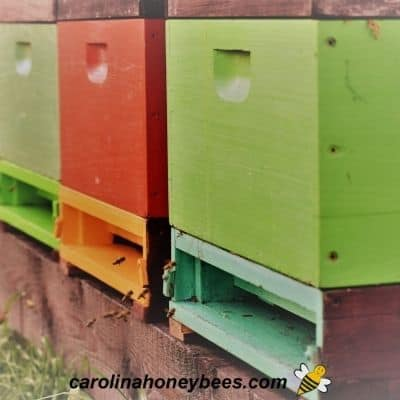 Painted beehives of different colors to help bees find their own hive image.