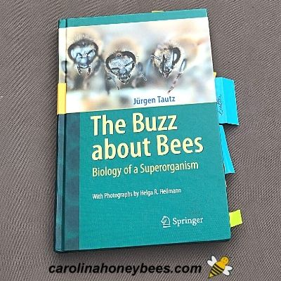Book Buzz about Bees about bee behavior image.