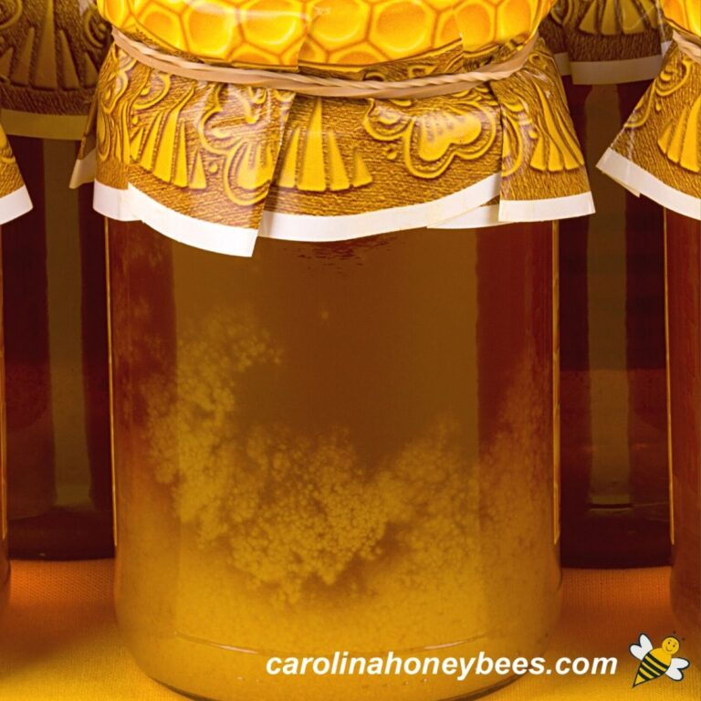 How to Decrystallize Honey Without Damaging It