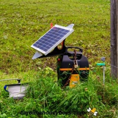 Solar electric fence charger for bee yard protection from bears image.