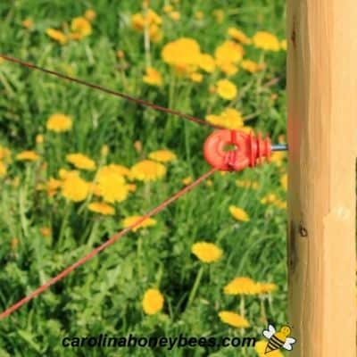 Plastic electric fence insulator image.
