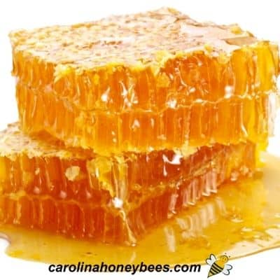 Pieces of honey comb with liquid leaking from wax image.