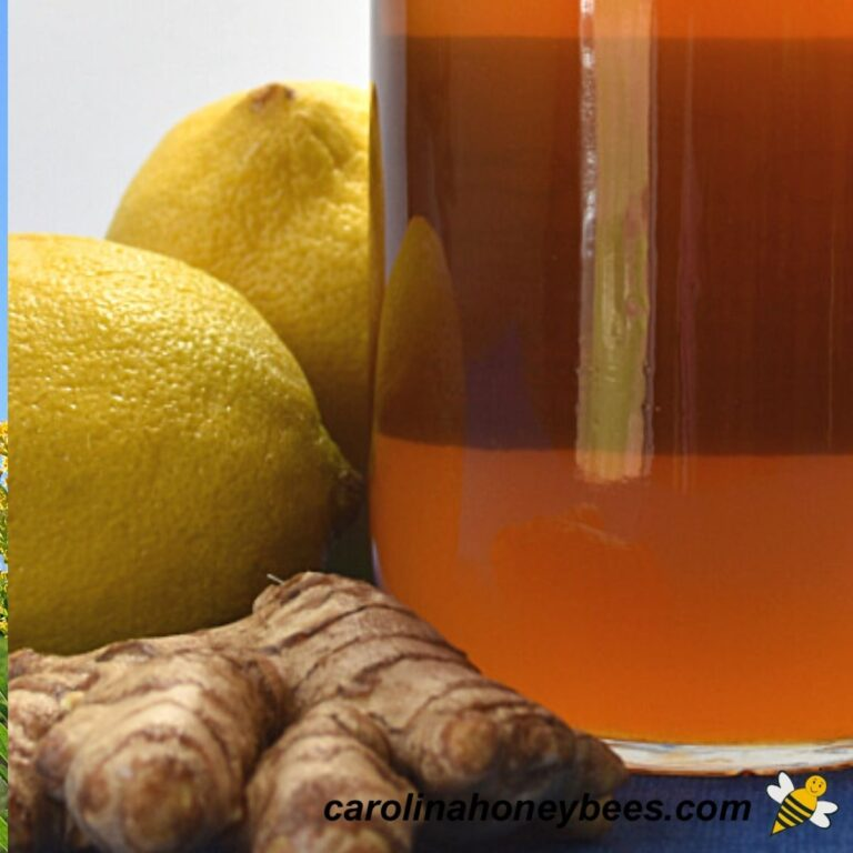 How to Make Lemon Honey- Infused with Ginger