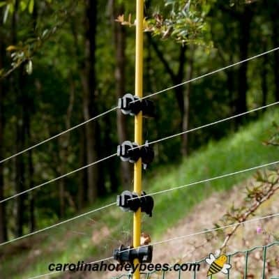 Five closely spaced electric fence wires for bear fence in bee yard image.