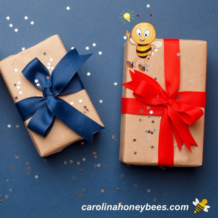 Awesome Gifts for Bee Lovers