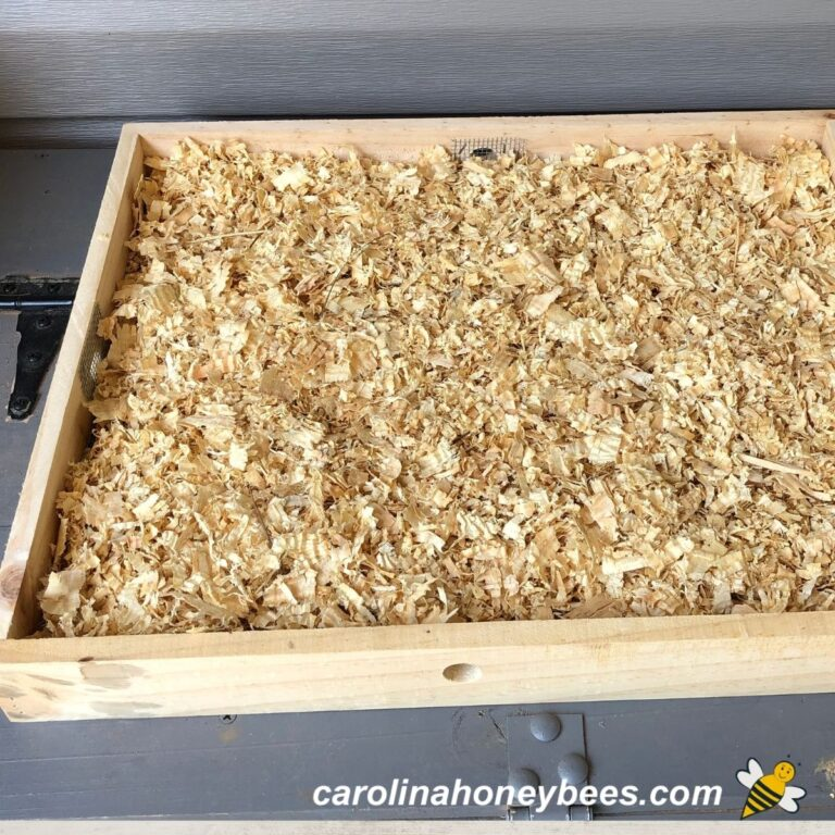 How to Make a Quilt Box for Your Beehive
