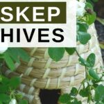 Bee skep hives in a garden image.