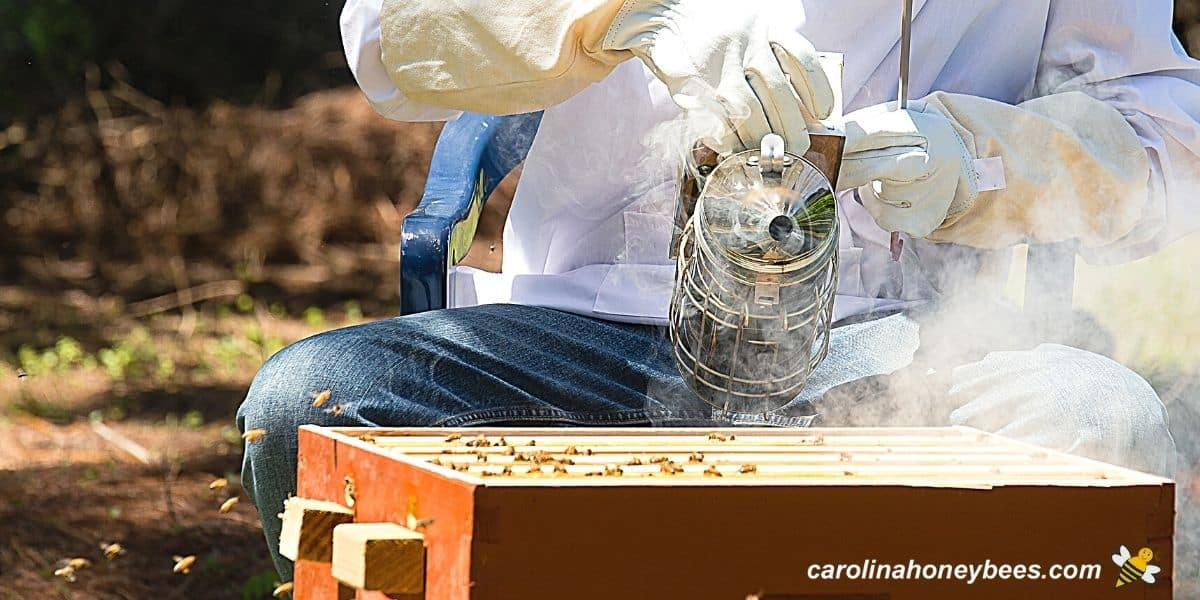 Beekeeper with hive and tool equipment image.