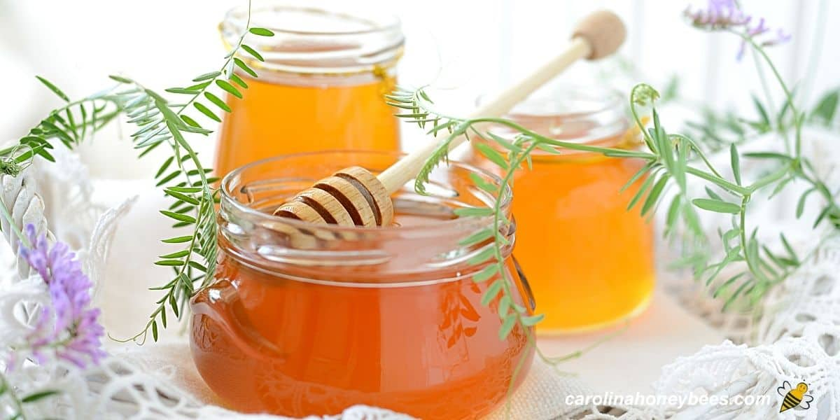 Various types of honey light and dark in glass jars image.