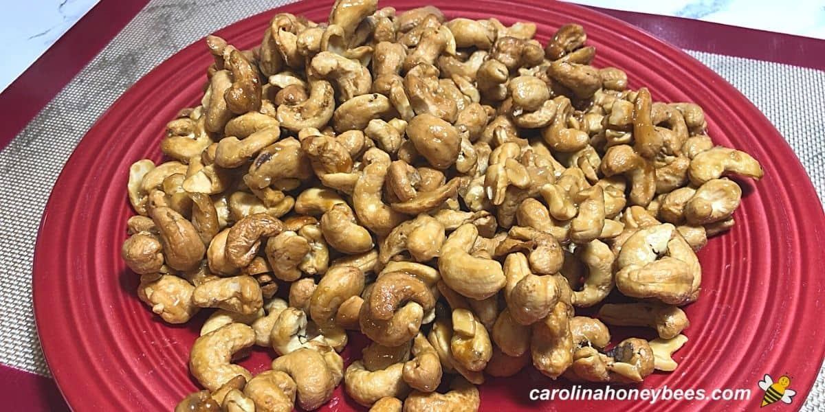 Toasted honey cashews on a red plate image.