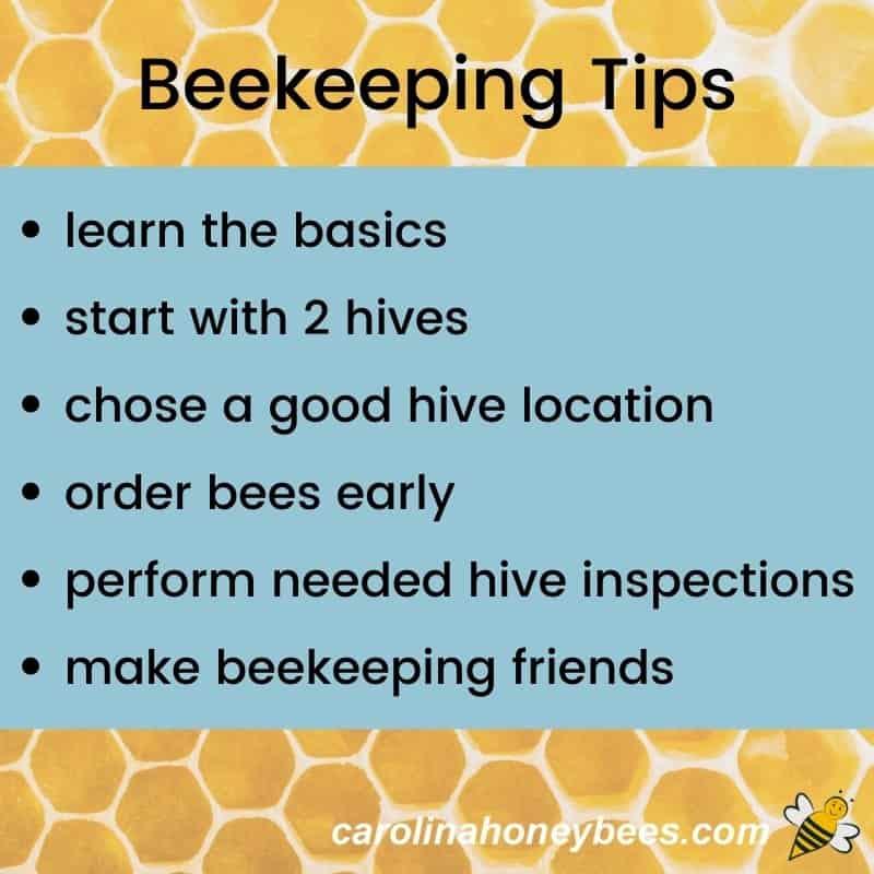 Diagram top beekeeping tips for new beekeeper list image.