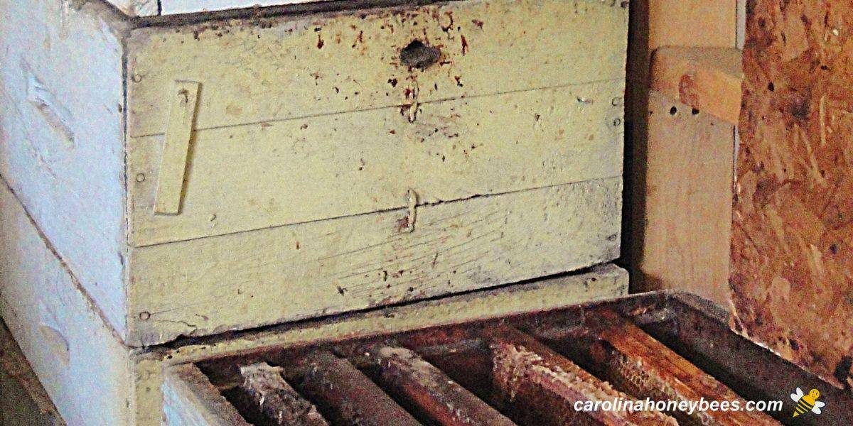 Older used beehives and other equipment in storage image.