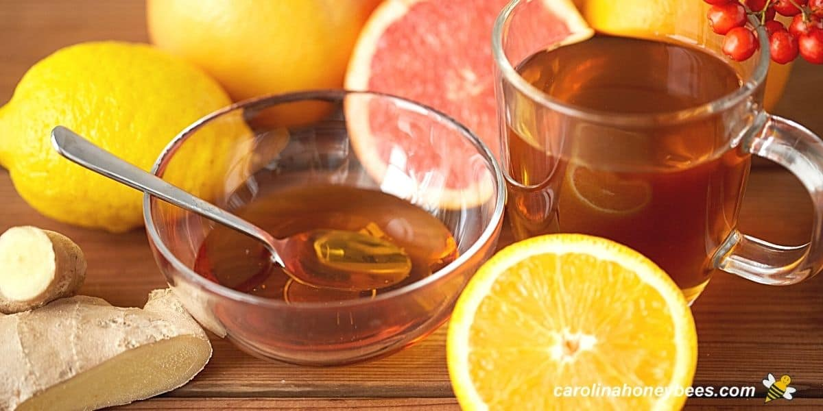 Honey in bowl with ginger, lemon and other fruits healthy uses for honey image.