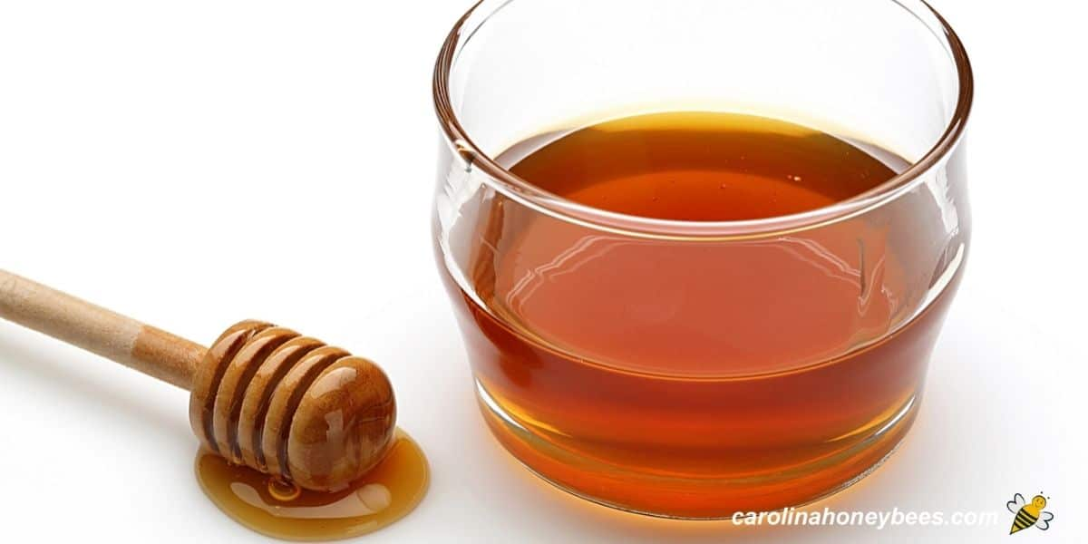 Bowl of amber colored honey and honey dipper image.