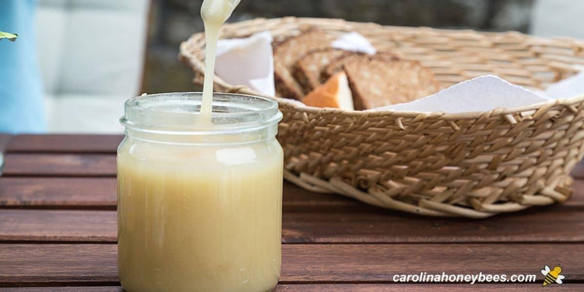 Small jar of homemade creamed honey made using light colored honey image.