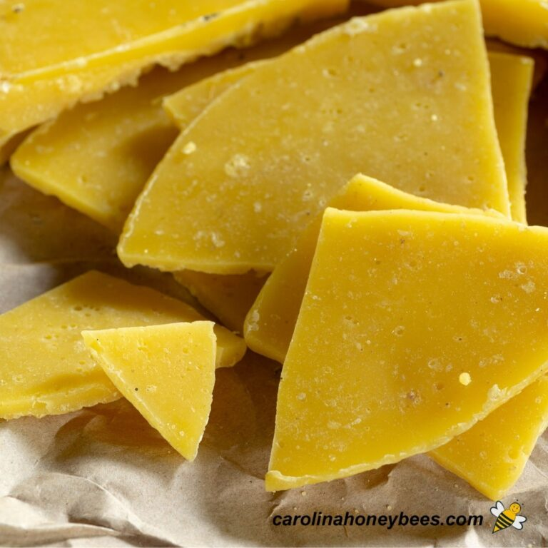 Awesome Uses for Beeswax