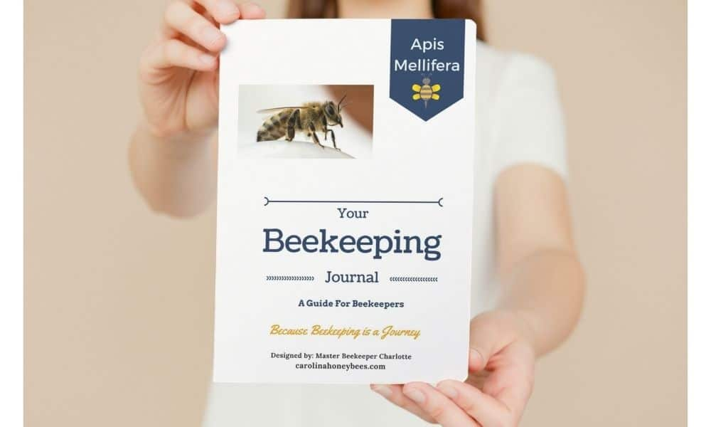 Woman beekeeper holding a beekeeping journal used for beehive records image.