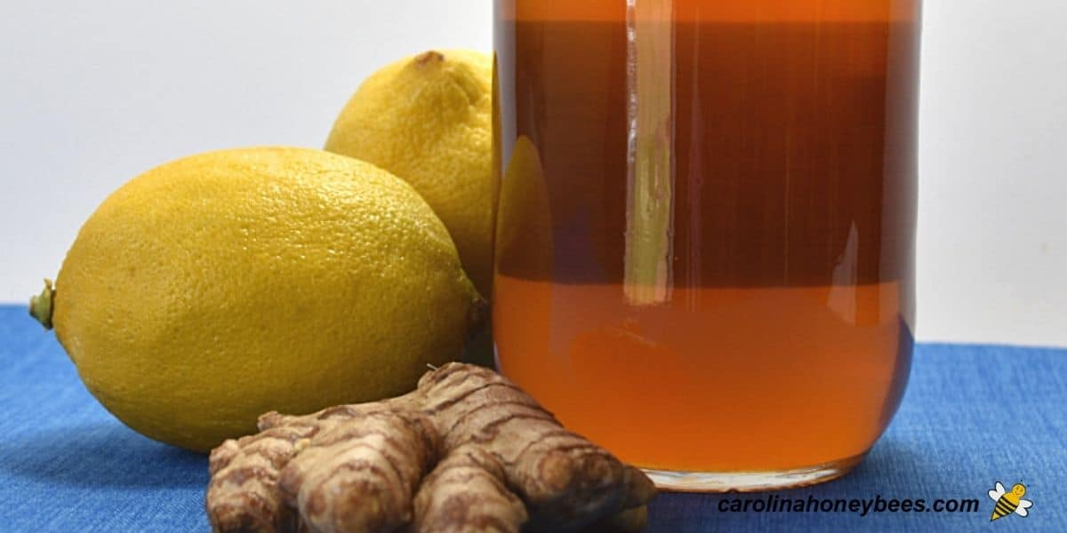 Jar of raw honey with lemons and ginger root ingredients for infusion image.