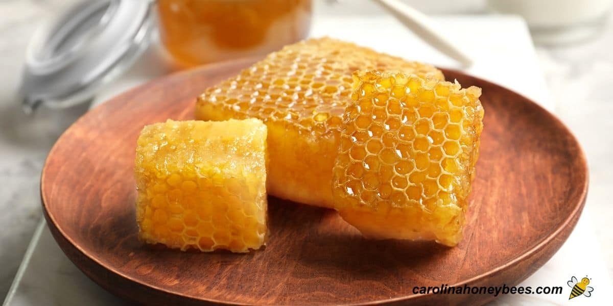 Chunks of honeycomb on  a plate ready to eat image.