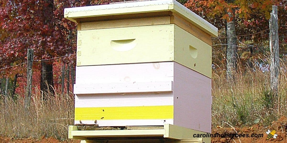 Homemade beehive made using hive plans for bottom image.