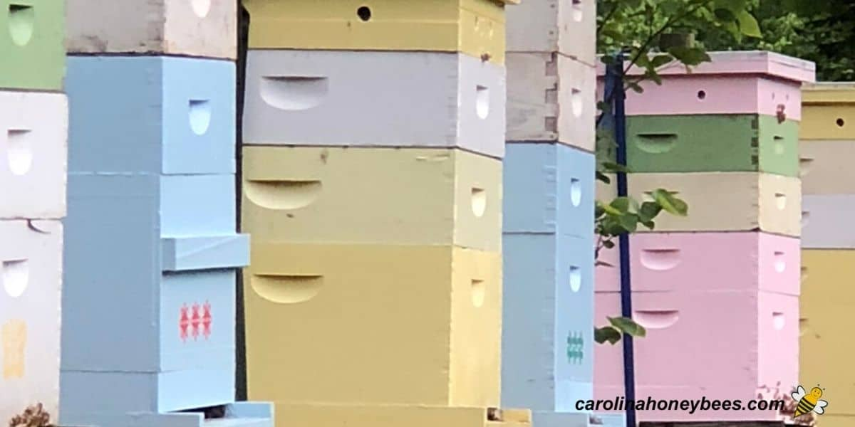 Row of colorful painted beehives image.